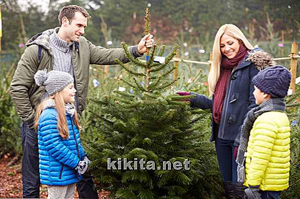 7 Jolly Tips per un Natale ecologico