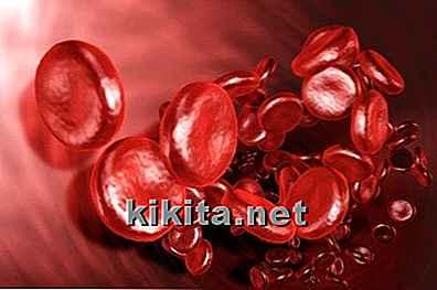 Hemoptysis 10 Oorzaken Van Bloed Ophoesten Nlkikitanet